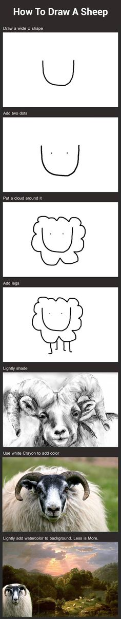 How to draw a sheep - funny pictures #funnypictures