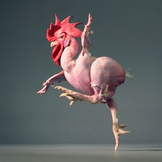 Tim Flach - Art People Gallery
