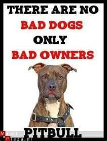 There are no bad dogs only bad owners...