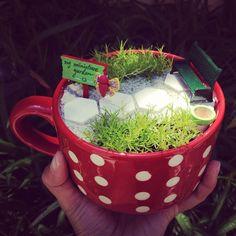 MIniature Garden in a Cup