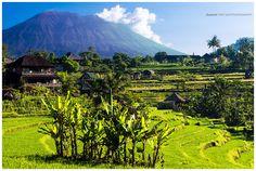 At the foot of Mount Agung, Sidemen, Bali