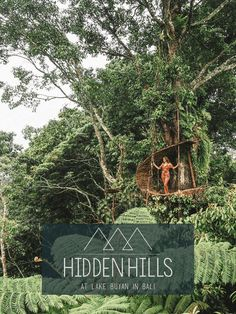 The Hidden Hills, Wanagiri near the Lake Buyan. Explore an epic Viewpoint in Bali.