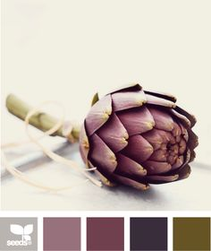 artichoke tones- This site takes photos and creates color palettes, which is cool, but I am in awe of some of the photos, they're beautiful