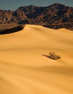 Death Valley ,