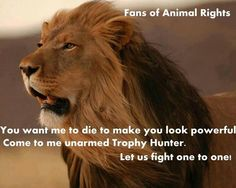 In reality, without their gun trophy hunters would get taken down before they could even think of having a lion trophy on their wall.