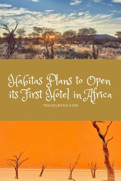 Habitas plans to open its first hotel in Africa! The new hotel will be situated in Namibia, about an hour's drive from Hosea Kutako International Airport. Find out more about what to expect from this new property. New Property, International Airport, Africa, Articles, How To Plan, Travel, Trips, Traveling, Afro