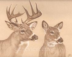 Print Deer Art Print from Original Animal by MatanteGe Deer Art, Moose Art, Bambi, Mughal Paintings, Drawing Sketches, Drawings, Paper Drawing, Wildlife Art, Watercolor And Ink