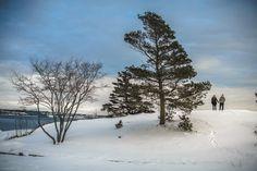 Halifax Photographers, Engagement Session of Katie & Jon • TOPHER & RAE STUDIOS