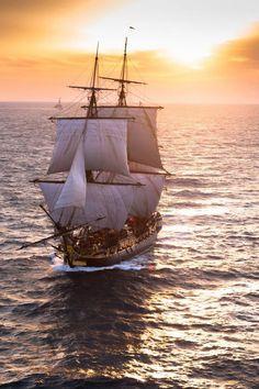 Brest : Le retour triomphal de lHermione | Mer et Marine