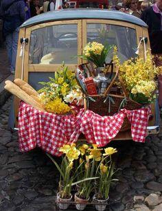Daffodil picnic