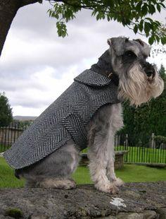 Bespoke dog coats