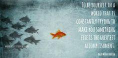 #quote #isnpiration #fish