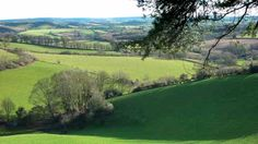 The area west of Beaminster has some of Dorset's best walking