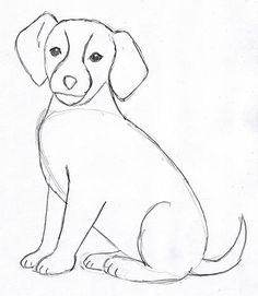 dog-drawing-4. Now go back and erase any extra lines you see. These should be easy to erase if you drew them lightly.