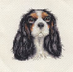 CAVALIER-KING-CHARLES-SPANIEL-Dog-Full-counted-cross-stitch-kit