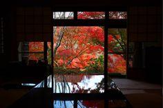 美食の秋はグルメ旅 食の宝庫九州の絶品料理旅館で美味に舌鼓