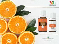 A narancs + gazdag, citrusos illata vidámabbá teszi a lelket, miközben nyugtató hatássalis rendelkezik. Gazdag az erős antioxidáns d-limonénben.