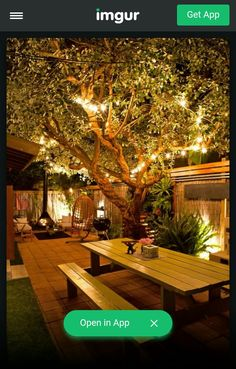 Beer garden style backyard
