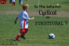 "Help for deciding when to let a behavior ""go""...is it cyclical or structural?"
