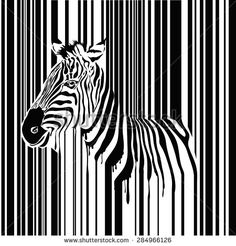 Zebra barcode vector illustration, abstract wild animal in black and white