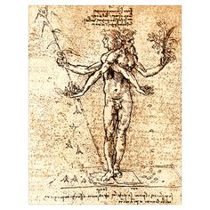 Pain and Pleasure : Historical artwork of allegorical figures representing pleasure (left) and pain (right), by the Italian artist, engineer and scientist Leonardo da Vinci.