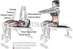 Decline sit-up exercise https://www.musclesaurus.com/