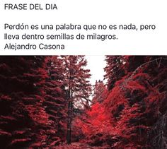 #citas #frases #frasesnaturaleza #frasedeldia #céspedsintetico #jardinería #paisajismo #gardening #landscape #artificialgrass #grass #padel #Valladolid  #flores #plantas #naturaleza #tenis #podasenaltura #talas #árbol #flor