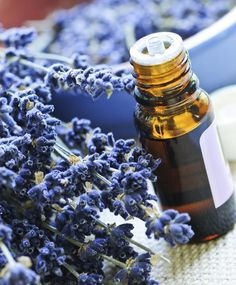 20 uses for lavender oil. I use it all the time for SO many things. Here are 20 ways to use for lavender oil – feel free to leave a comment with any other uses that you know of! Keep in mind that I use Young Living Lavender oil because they only … Essential Oil Uses, Doterra Essential Oils, Yl Oils, Young Living Oils, Young Living Essential Oils, Lavender Oil Uses, Essential Oil Combinations, Pot Pourri, Think Food
