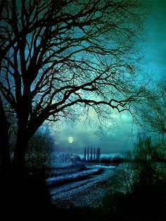 Tranquil - Tranquil Night by Stroody.deviantart.com on @deviantART