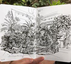 Paul Heaston, Sketching in the Marnie Pavilion, @denverbotanic gardens.