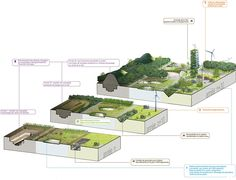 SOA architects