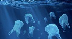 Pourquoi faut-il bannir les sacs plastiques? Leur production requiert de l'eau, de l'énergie, du polyéthylène (dérivé pétrolier) et contribue à l'émission de gaz à effet de serre. Tout ça pour un s...