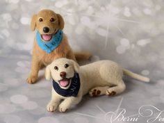 Hey, I found this really awesome Etsy listing at https://www.etsy.com/ru/listing/452220128/custom-felted-labradors-pair-pet-replica