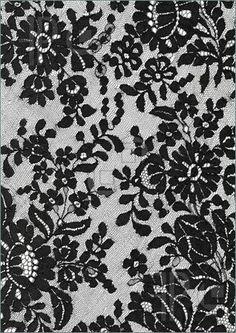 Google Image Result for http://wickedmusestudio.files.wordpress.com/2010/10/black-lace-01.jpg