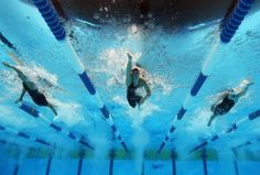 Freestyle swimming Allison Schmitt hopes to make a name for herself at this year's Olympic Games.