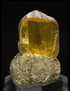 Gypse. Red River Floodway, Winnipeg, Manitoba  Canada (2006) Taille cristal=3.5 x 3 cm