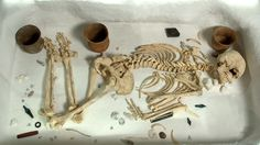 BBC Bitesize - What was life like in the Bronze Age?