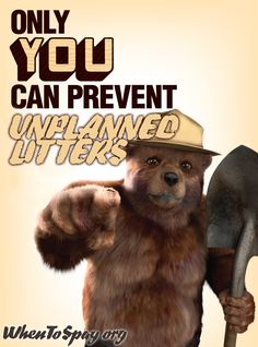 Not Smokey - he's just a bear! This is a Century Smokey the Bear poster, according to the NYT. Wow Mom, Wildland Firefighter, Smokey The Bears, Fire Prevention, Demotivational Posters, Bear Pictures, Forest Service, 70th Birthday, Happy Birthday