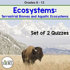 Use this set of 2 daily quizzes on terrestrial biomes and aquatic ecosystems to keep your students studying in the days leading up to the unit exam. Each quiz is 2 pages and includes a teacher answer key. While these are perfect for daily quizzes, they can also be used as homework assignments, classwork, or study guides.