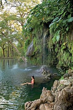 You have so many choices if you want to take a dip—from the more widely known Blue Hole in Wimberley to Hamilton Pool, a massive crater created when the dome over an underground river caved in, outside the town of Bee Cave. But the lushest, and least crowded, swimming spot is at Krause Springs ($7 cash only) in Spicewood. The privately owned, 115-acre park features 32 springs, several of which burble through a man-made pool then tumble over a fern-lined cliff into a deep hole. The brave can…