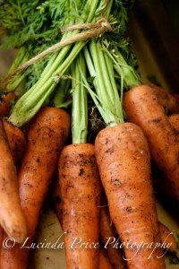 Farm shop carrots