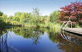 Biotop Schwimmteiche und Pools, natural living pools