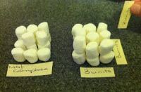 Teaching volume with marshmallows. Kids will love this activity!