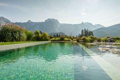 Jaké jsou ty nejkrásnější české islovenské plovárny, už jsme vám psali. Stejně tak to, kde najdete ty nejhezčí lomy, ve kterých se pořád ještě dá vykoupat. V posledních letech se místo chlorované vody čím dál víc trendy stávají biotopy, tedy přírodní koupaliště, kde se voda nečistí chemicky, ale ekologicky pomocí rostlin amikroorganismů.Bazény bez chemie jsou … Swimming Pool Chlorine, Natural Swimming Ponds, Swimming Pools Backyard, Rain Garden, Water Garden, Living Pool, Pool Cost, Greenhouse Wedding, Pool Designs