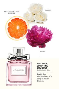New at the Olfactory: 32 New Fragrances for Spring Miss Dior Blooming Bouquet. Ah, now I understand why I love this perfume so much.Miss Dior Blooming Bouquet. Ah, now I understand why I love this perfume so much. Perfume Scents, New Fragrances, Perfume Oils, Perfume Bottles, La Nuit Tresor Lancome, Miss Dior Blooming Bouquet, Christian Dior Perfume, Celebrity Perfume, Hermes Perfume