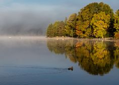 All sizes | Lake of Bays-3390 | Flickr - Photo Sharing!