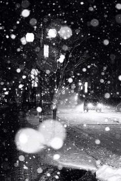 Night Snow by Minoru Yoshida. I love snow! Black White Photos, Black And White Photography, Samael Angel, Winter Magic, Cozy Winter, Winter Christmas, Great Photos, Pretty Pictures, Winter Wonderland