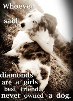 Ladies @WalknWag SB, this one is for you! #diamonds #dogquote #girlsbestfriend