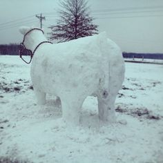 Same snow cow... SHOW CIRCUIT MAGAZINE had it on Facebook today!  Very clever idea