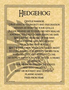 Hedgehog Prayer http://www.blackmagic1313.com